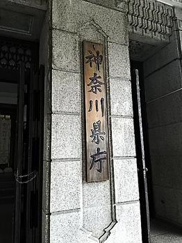 DSC_0415.JPG